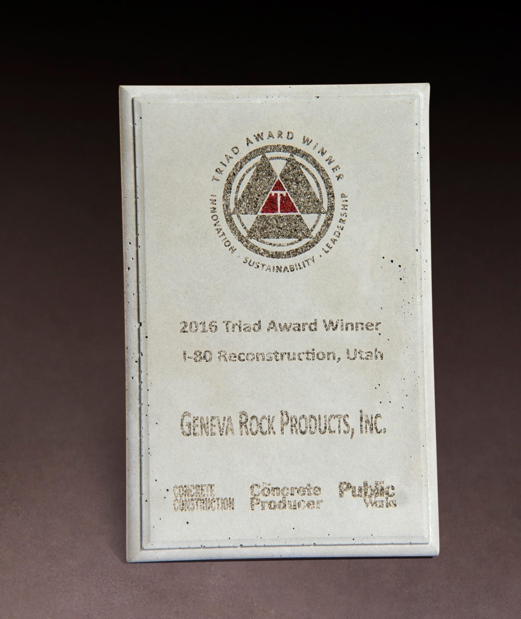 2016 Triad Award Winner