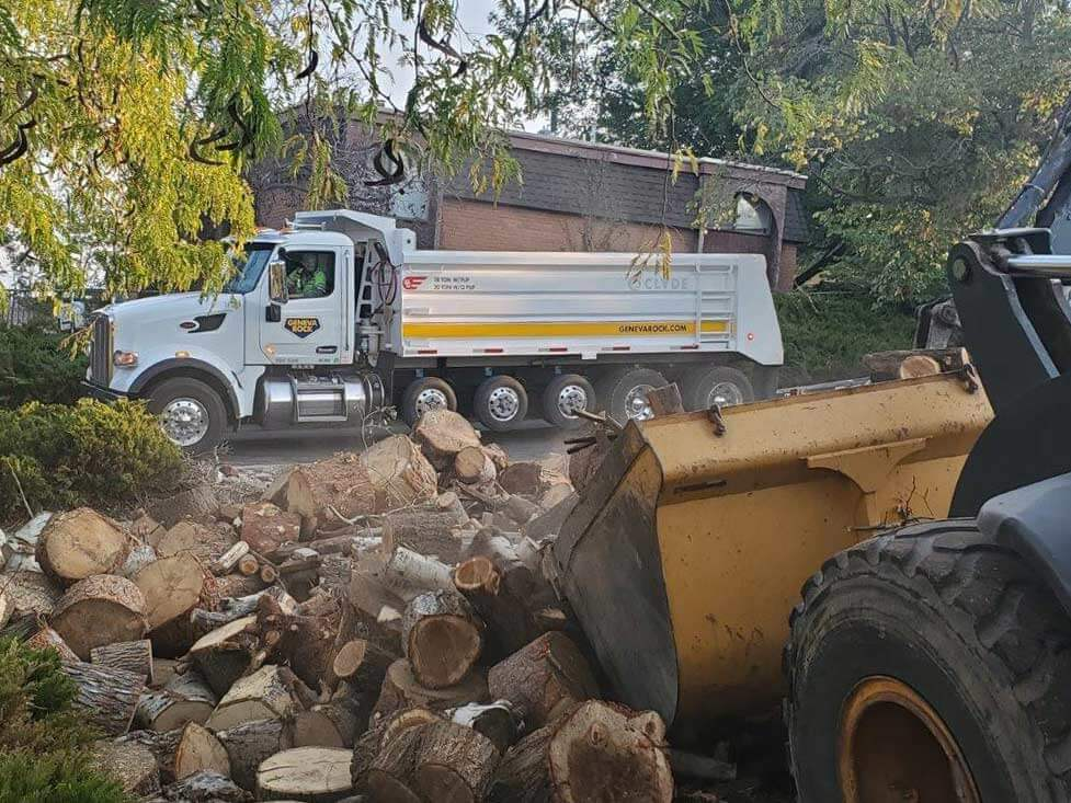 Firewood loaded into Geneva Dump Trucks